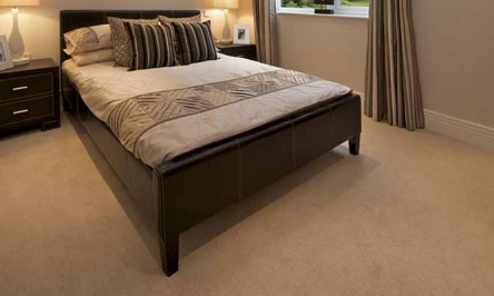 Carpet Cleaning: The Best Homemade Carpet Cleaners