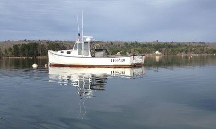 Learn How To Buy A Used Boat – Old Used Boats For Sale