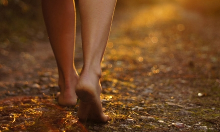 Foot Problems Causes, Signs, Symptoms And Treatments