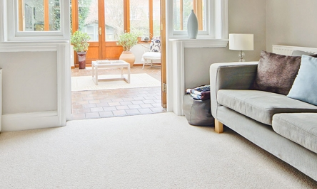 Homemade Carpet Cleaners: All You Need To Know