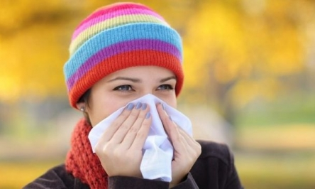 Sinus Infection Treatment, Symptoms And Causes